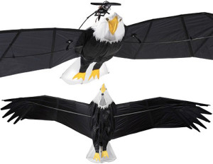 REMOTE CONTROL BALD EAGLE